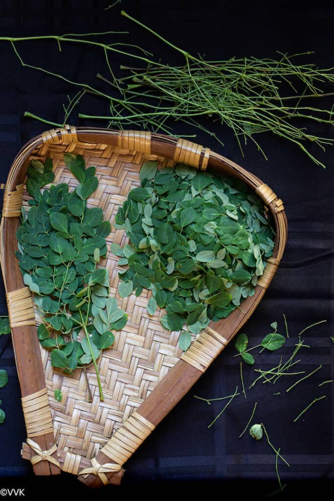 moringa leaves cleaning in muram