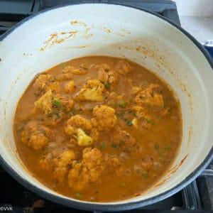 prepared curry
