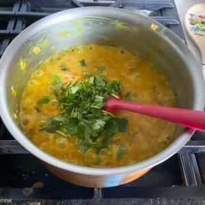 adding the chopped cilantro
