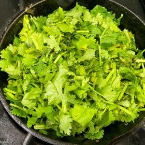 wilting the cilantro